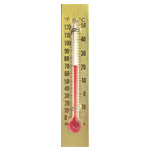 Paper Backed Thermometer