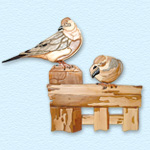 Mourning Dove Intarsia Design Pattern