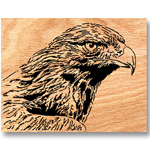 Golden Eagle Scrolled Art Design Pattern