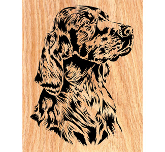 Irish Setter Scrolled Art Design Pattern