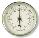 Thermometer Insert